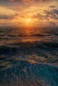 Where the Sun meets the Deep