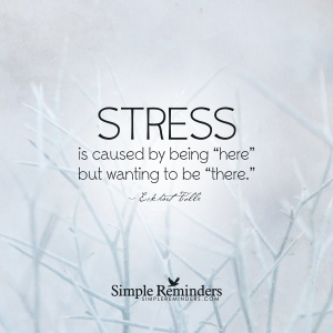 eckhart-tolle-stress-being-here-there-9j3s
